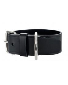 HUNTER Dog Collar Ecco Sport Extra